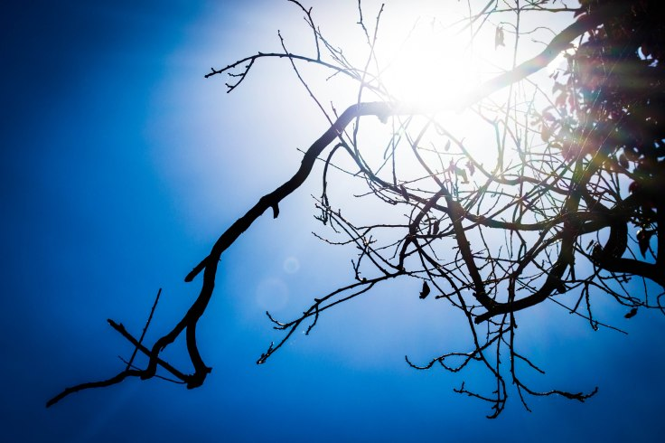 Photograph of sky